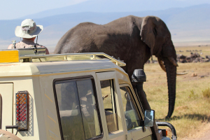 How To Become A Wildlife Manager Or Technician Environmentalscience Org