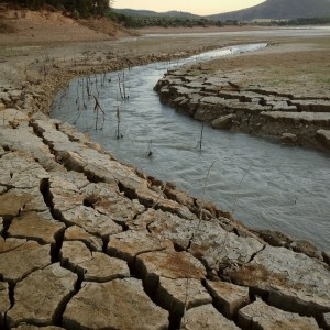 drought problems An international system could save lives but a recent un climate event in new  york passed without anyone putting up funding or accepting.