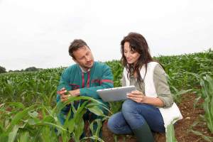 How to Become an Agricultural Engineer | EnvironmentalScience org