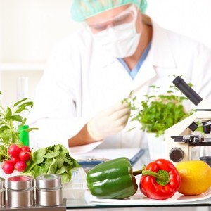 Future of Agriculture: Facts About GM Crops and Biotech