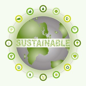What Is Sustainability And Why Is It Important