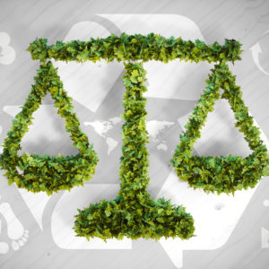 Environmental Law: Government and Public Policy Towards the