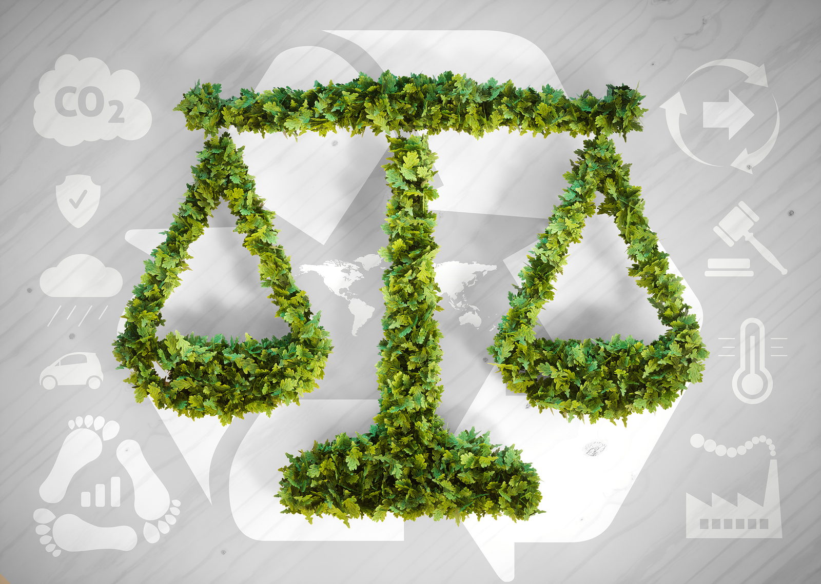 Environmental Law Government And Public Policy Towards The