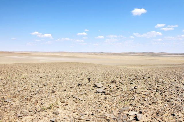 Deserts As Ecosystems Why They Need Protecting