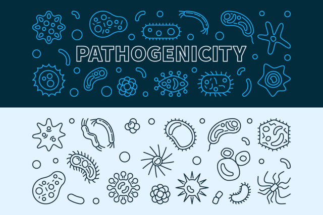 Guide to Parasitology | EnvironmentalScience org